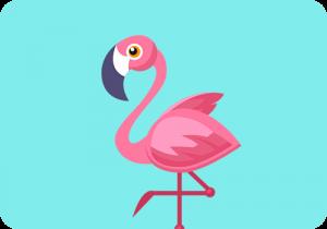 Flamingo Shotje